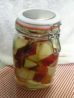 りんご酵母仕込み1M.jpg
